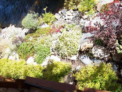 gallery/medium/0 (12)-Landscaping-Ketchum-Idaho.jpg