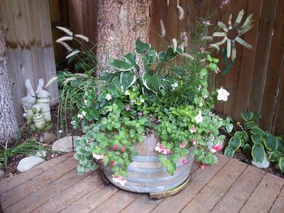 gallery/medium/0 (9)-Gardening-Ketchum-Idaho.jpg