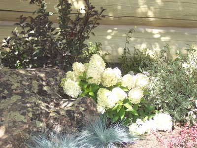 gallery/medium/100_2587-Landscaping-Sun-Valley-Idaho-.jpg