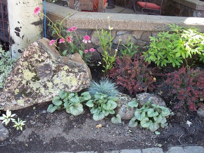 gallery/medium/100_2599-Landscaping-Ketchum-Idaho.jpg