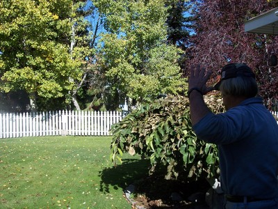 gallery/medium/100_2605-Gardeners-Hailey-Idaho.jpg