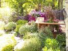 gallery/small/0 (13)-Garden-Hailey-Idaho.jpg