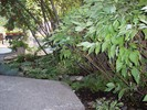 gallery/small/0-Landscapers-Bellevue-Idaho.jpg
