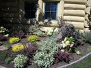 gallery/small/100_2582-Garden-Design-Ketchum-Idaho.jpg