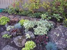gallery/small/100_2601-Landscaping-Bellevue-Idaho.jpg
