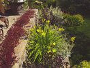 gallery/small/202 (28)-Landscapers-Hailey-Idaho.jpg